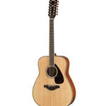 Acoustic 12-String Guitar Dreadnought
